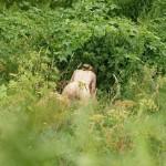【ケダモノ】茂みに隠れてセックスしてる人間がいるんだけど