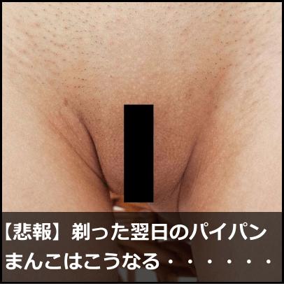 エロ情報12