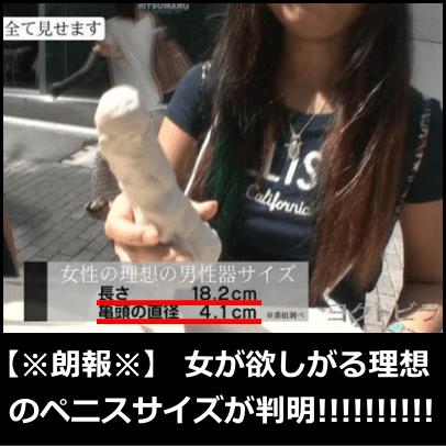 エロ情報2