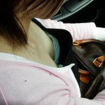 ドライブデートでおっぱいを拝見する車内胸チラエロ画像