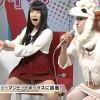 テレビのハプニングパンチラ!放送事故エロ画像パンツ専用