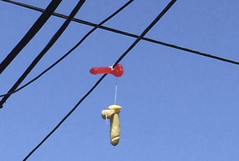 米オレゴン州の送電線に無数の「大人のおもちゃ」、米住民の話題さらう