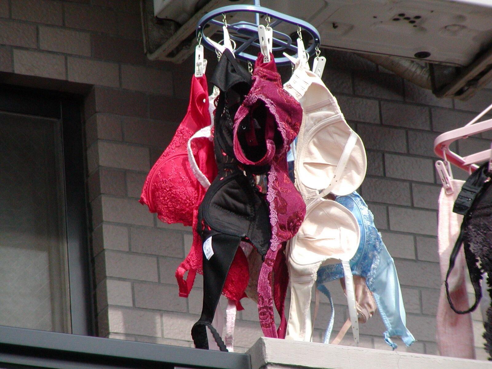 下着フェチ 洗濯物 下着姿 ベランダ 庭先 大量 下着 外干し 洗濯物 エロ画像【5】