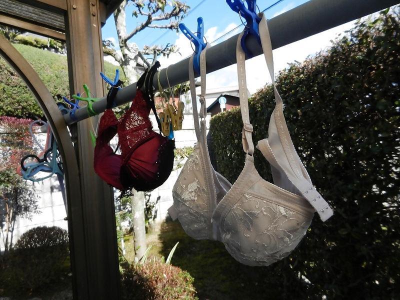 物干し竿 パンツ ブラ 吊るす 干し方 エロ画像【9】