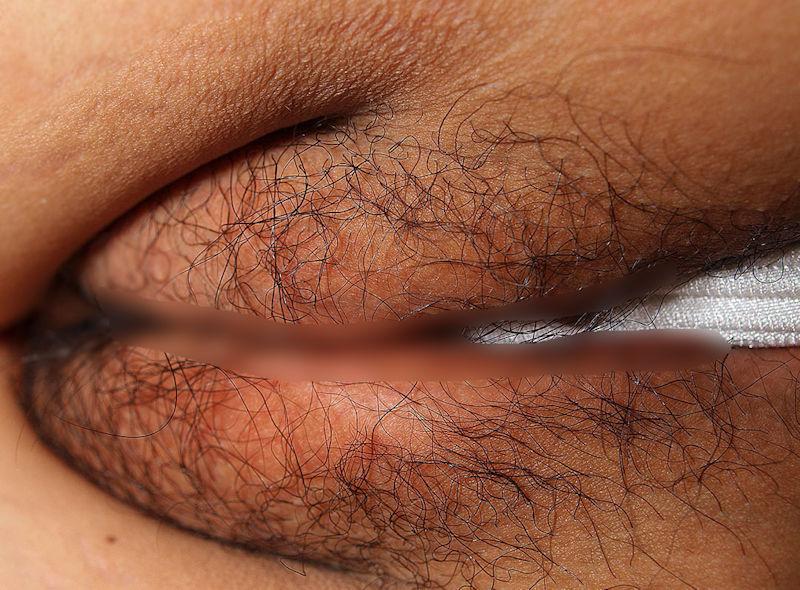 大陰唇の肉感がエロいはみまん画像集