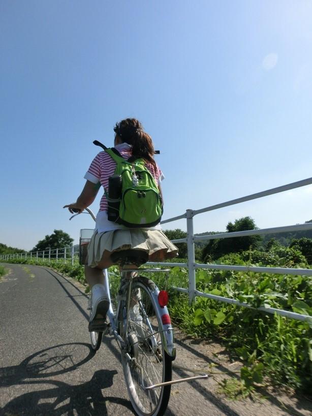 自転車 パンチラ 街撮り エロ画像【6】