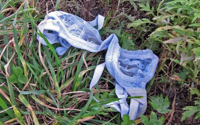 地面にブラやパンツが落ちてる不審な下着のエロ画像 ②