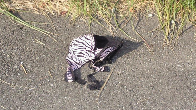 地面 ブラ パンツ 落ちてる 下着 エロ画像【22】