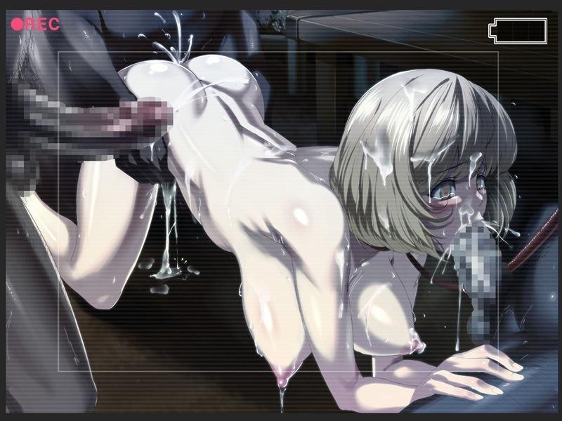 レイプ REC 録画 悲惨 二次元 エロ画像【14】